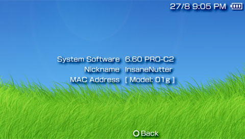 Update psp to 6. 60 and install pro-cfw nicoblog.